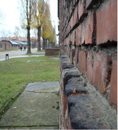 Uploads/up2date/auschwitz_2008/01.jpg